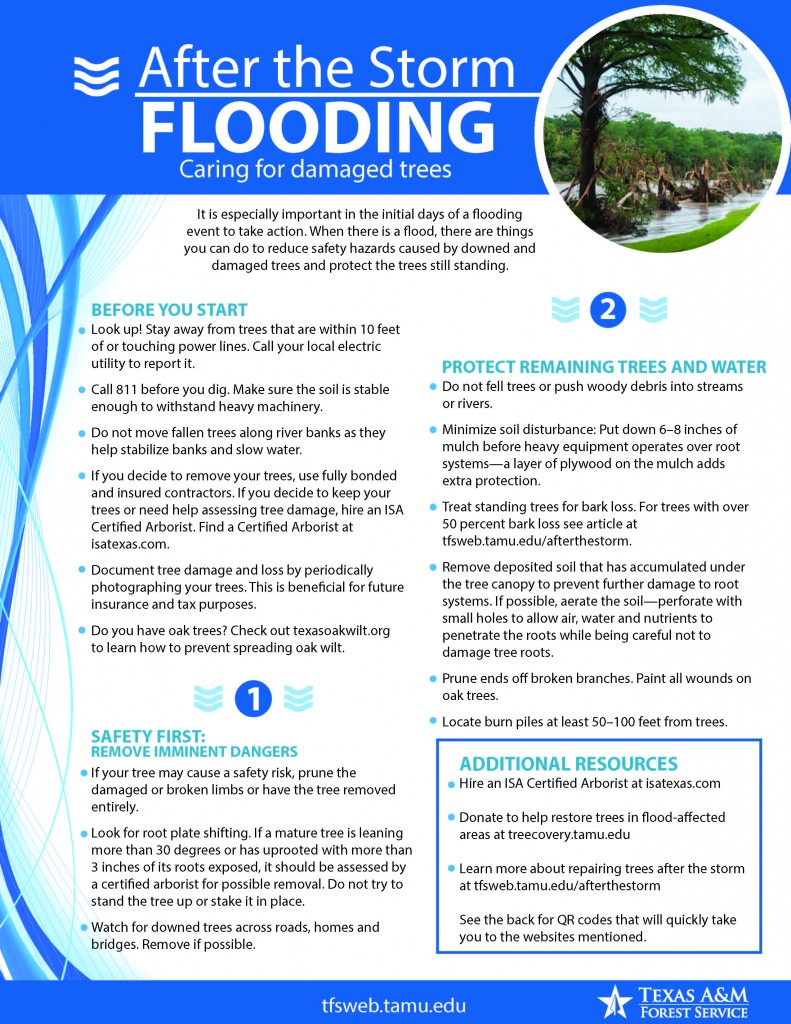 After the storm_Flooding-1_Page_1
