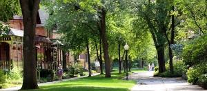Minnesota ped street