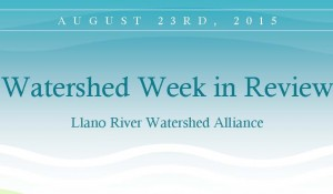 Weekly Review SLWA
