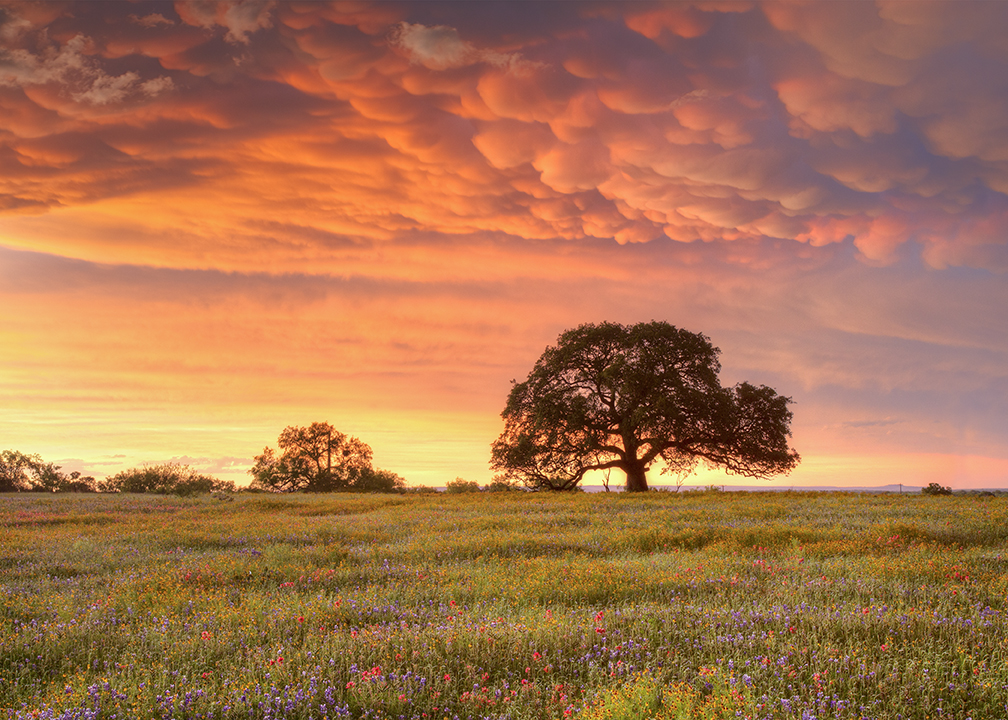 photo contest winners announced welcome to hill country alliance