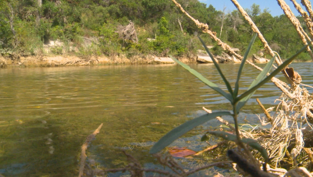 Dripping Springs homeowners push against treated wastewater in creek