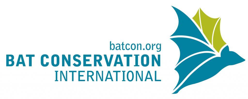BCI New Blue Logo