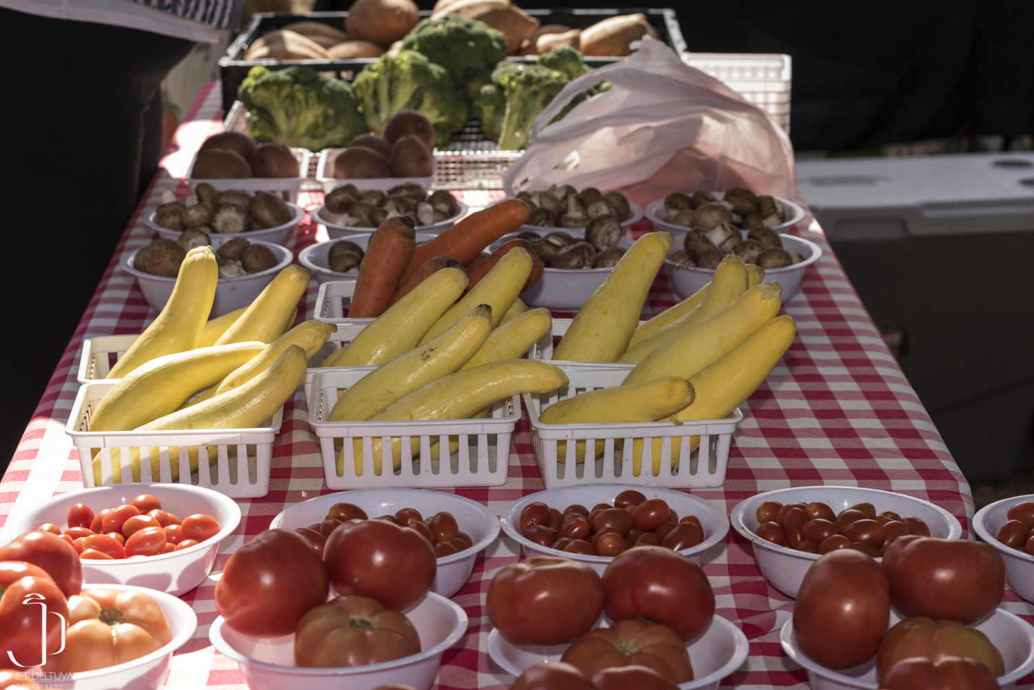 The Farmers Market at the Cibolo- Boerne's Community Farmers Market Opens March 11
