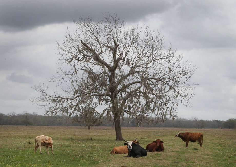 State program makes conservation pay for farm, ranch owners