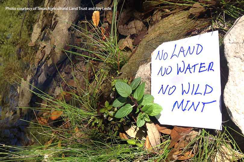 'No Land No Water' campaign promotes conservation