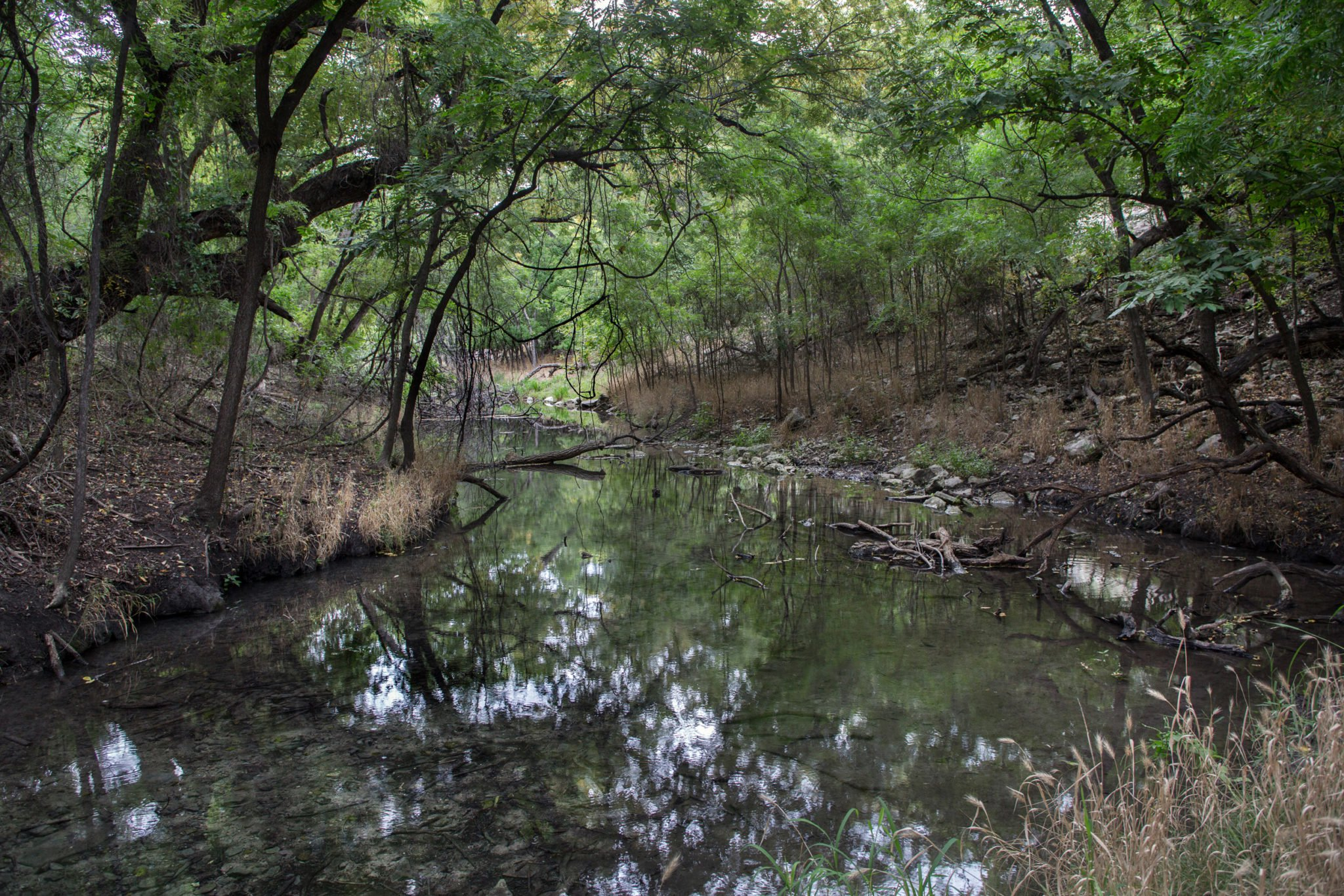 TCEQ Punts on Water Rights Fight on the San Saba River