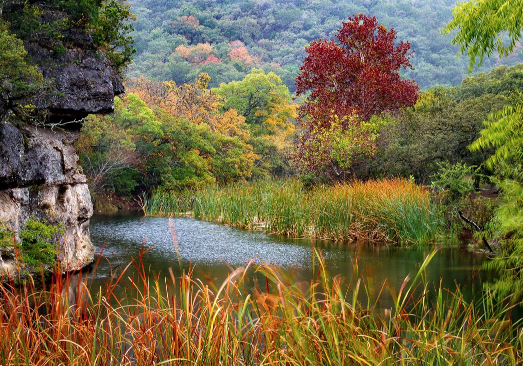 Hill Country Alliance hosting Nov. 3 workshop on management of riparian areas