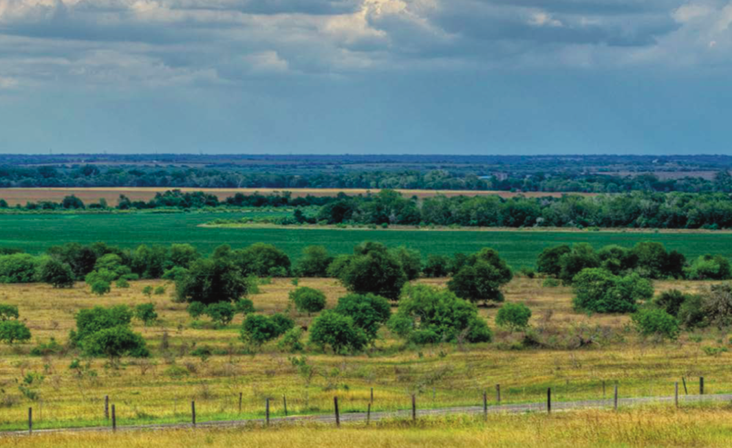 New report by the Texas Land Trust Council highlights over $1 billion in annual economic benefits of conserved lands to flood mitigation, agriculture, water resources