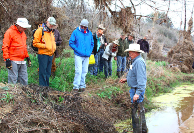 Landowners, volunteers wade into riparian restoration effort