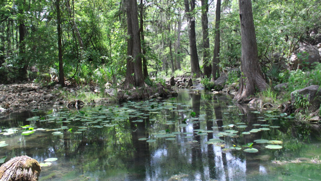 Hill Country's Honey Creek no longer set to receive treated sewage