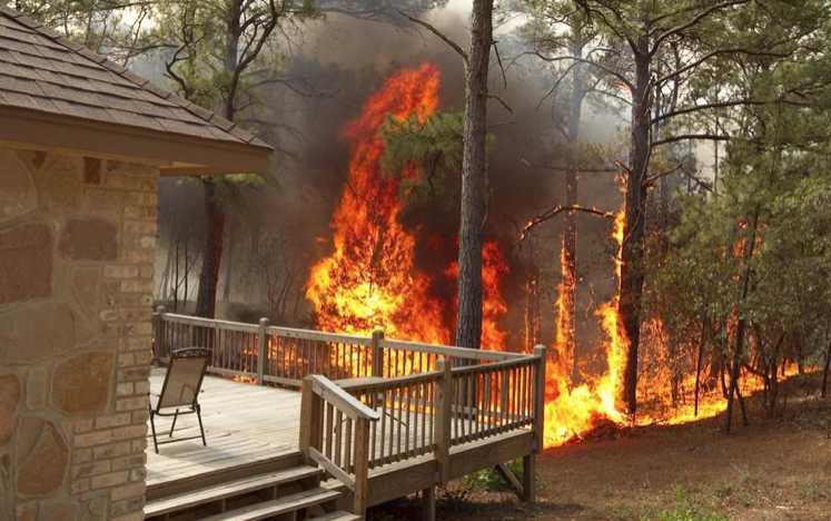 'When, not if it happens': Factors favor possible Austin megawildfire event