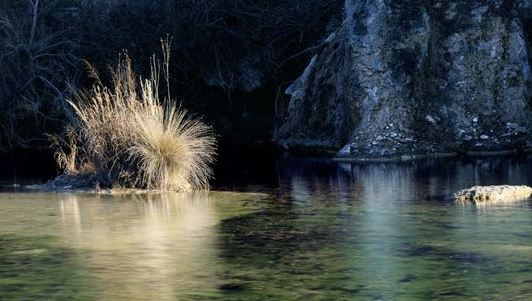New Texas conservation area boasts hundreds of springs