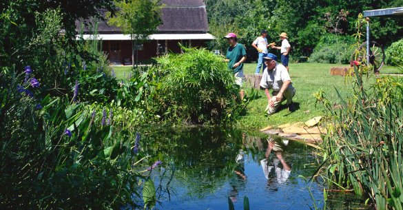 Class Recruiting 2015 – Texas Master Naturalists