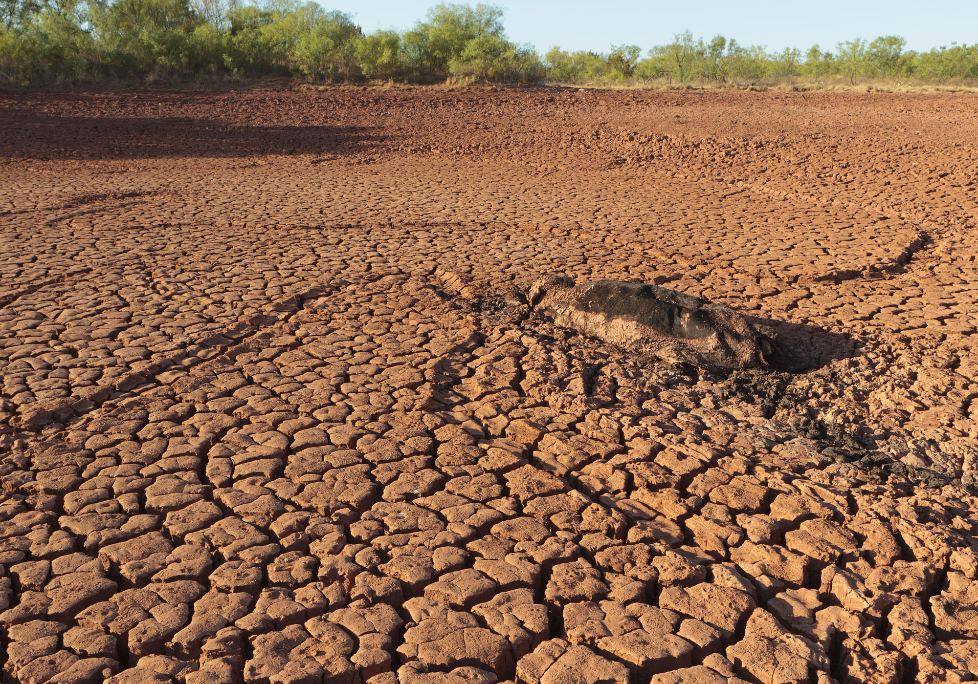 The best time to plan for drought is when we aren't in one