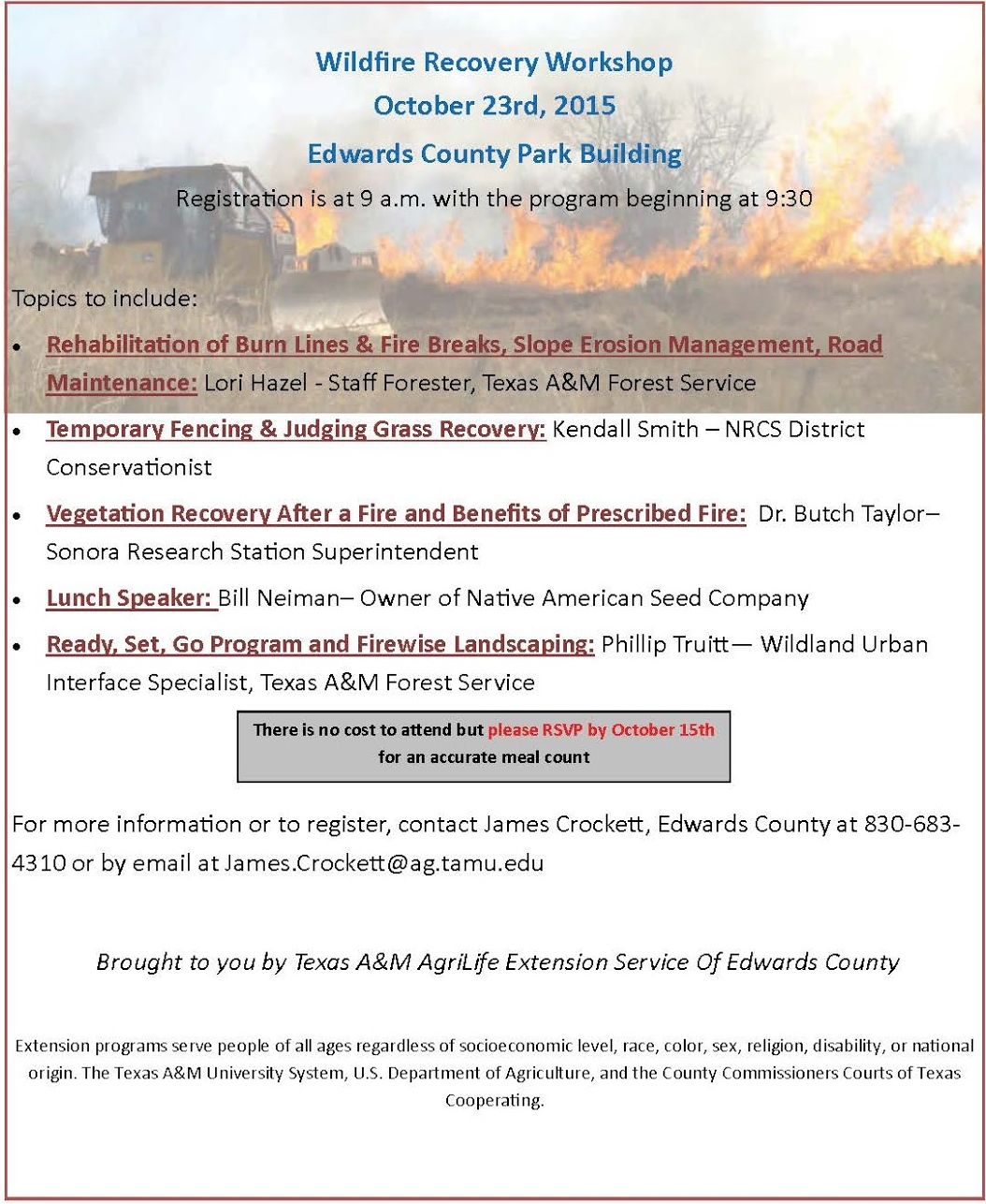Wildfire Recovery Flyer