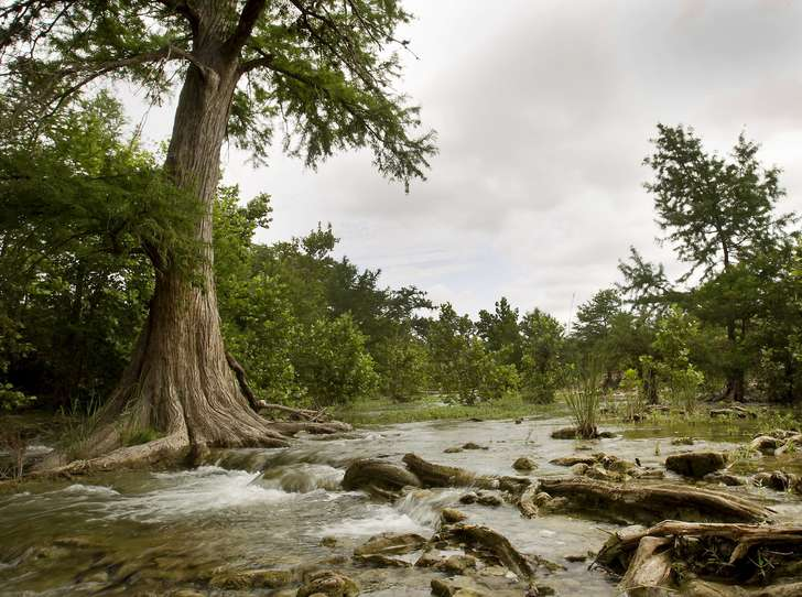 Cook: The lure and challenge of the Texas Hill Country