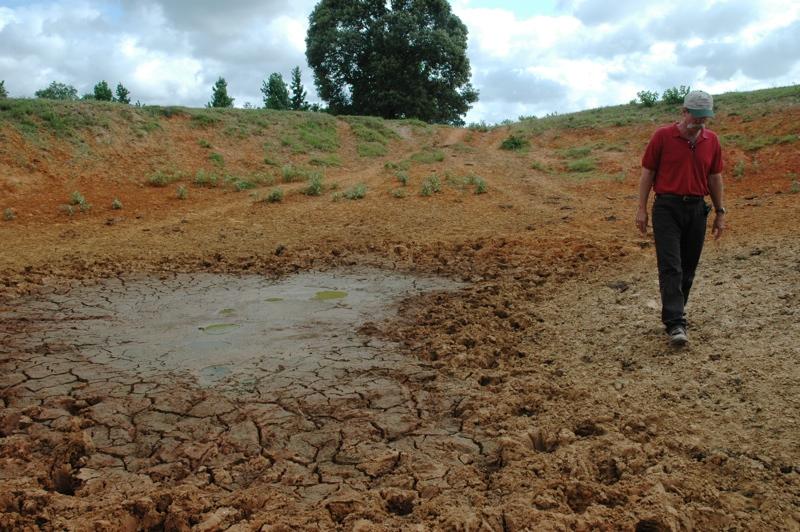 AgriLife Dry Pond 1 LR