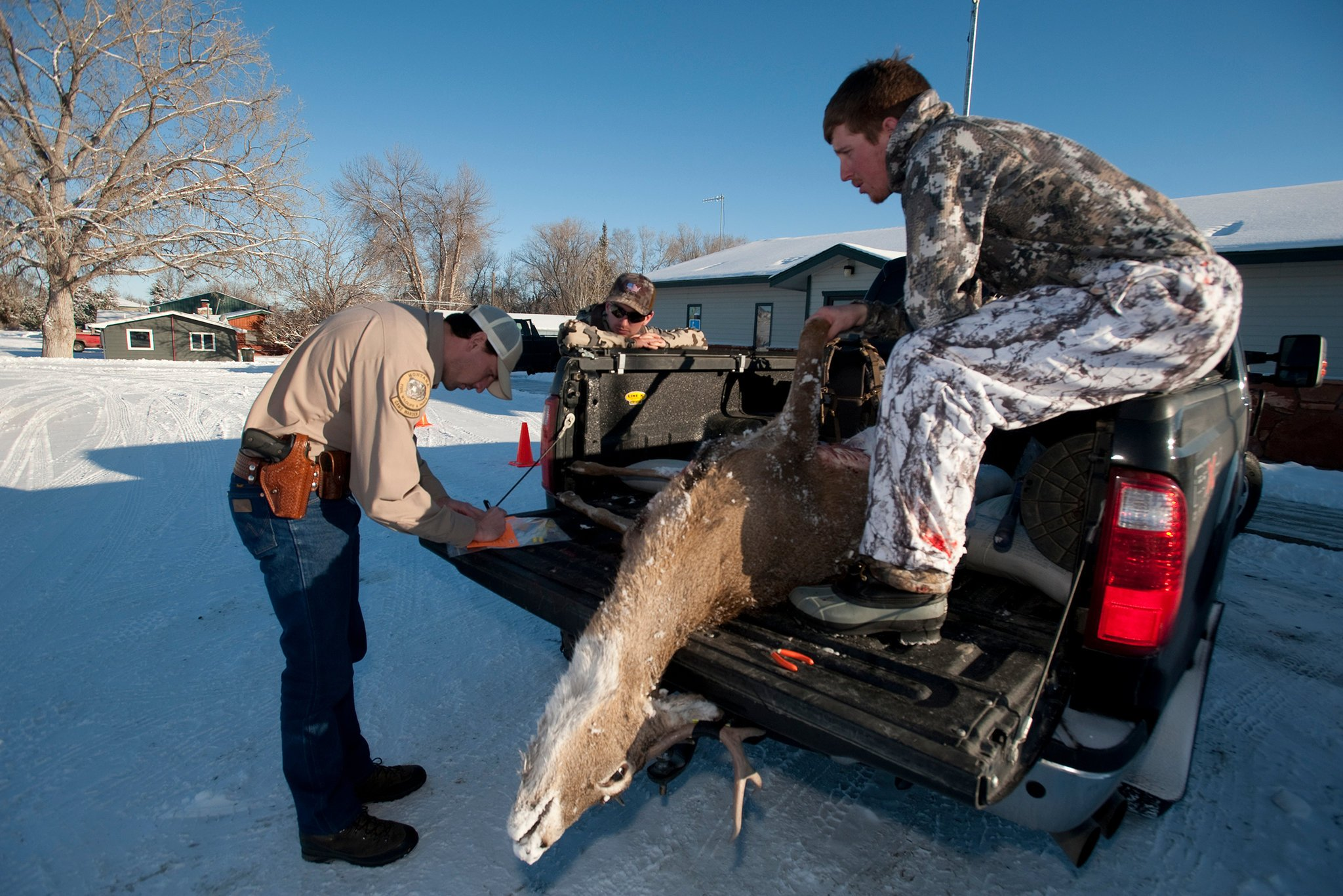 States Confront the Spread of a Deadly Disease in Deer