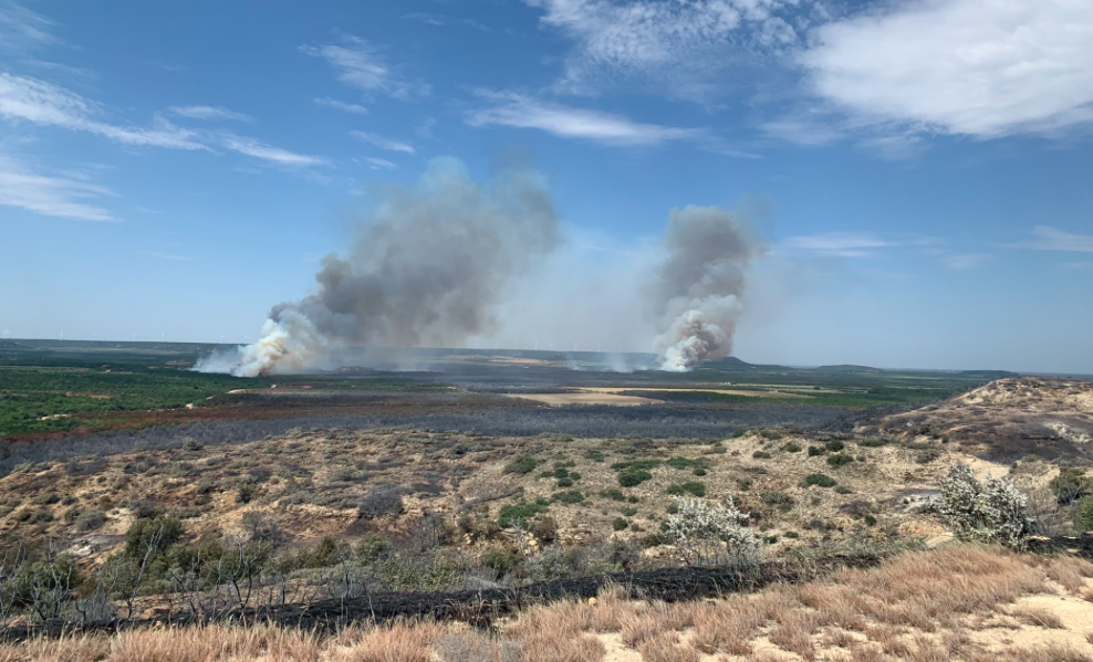 Game Ranch Wildfire In Nolan County (Texas A&M Forest Service)