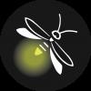HCNSM Icons Firefly