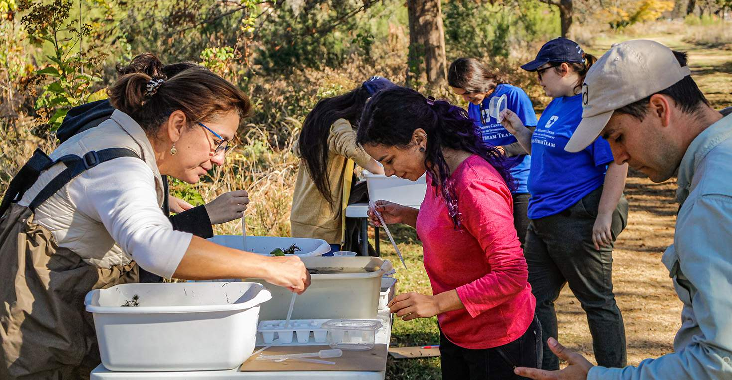 Texas Stream Team Hosts A Macroinvertebrate Training