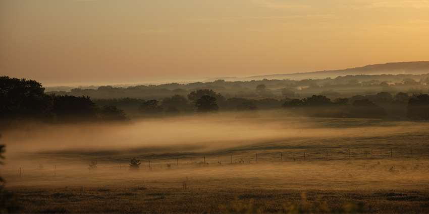 Hazy Morning On A Ranch