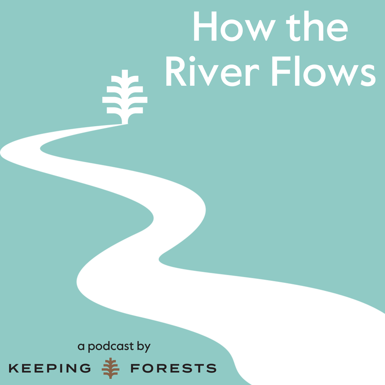 Easing Into Watershed Protection With Taxes And Bonds Featuring Lon Shell, Frank Davis, And Phillip Covington