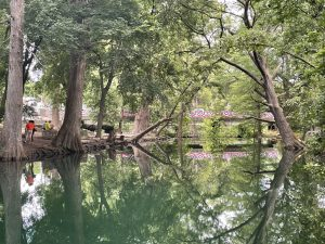 The Blanco River flows through the shade of cypress trees