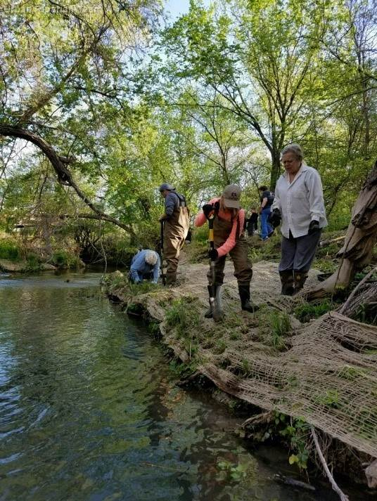 Urban Riparian Demonstration Site In Seguin Approved For Three More Years