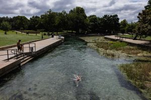 Swimmer swims upstream in the San Marcos River at Sewell Park