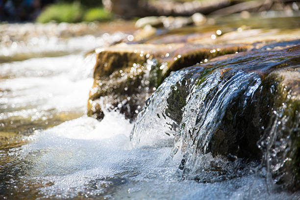 EPA Recognizes Austin Water For Efforts To Restore Ecosystems