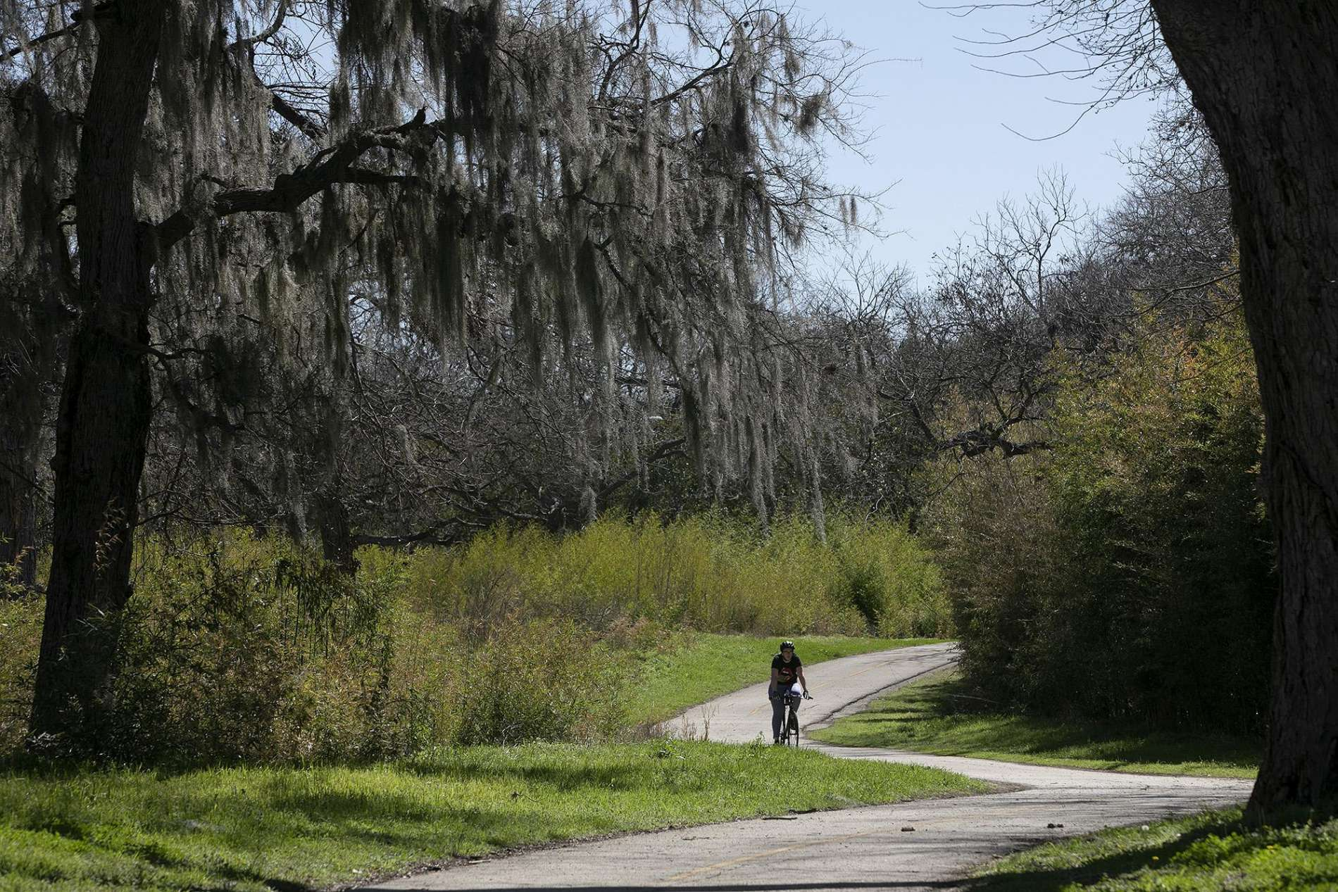 Cyclist Biking On A Path In The Salado Creek Greenway