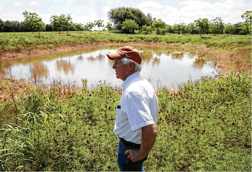 Mark Friesenhahn Looks Over The Sediment-laden Water From A Nearby Quarry Flooded 15 Acres Of His Orchard To A Depth Of A Foot And A Half.